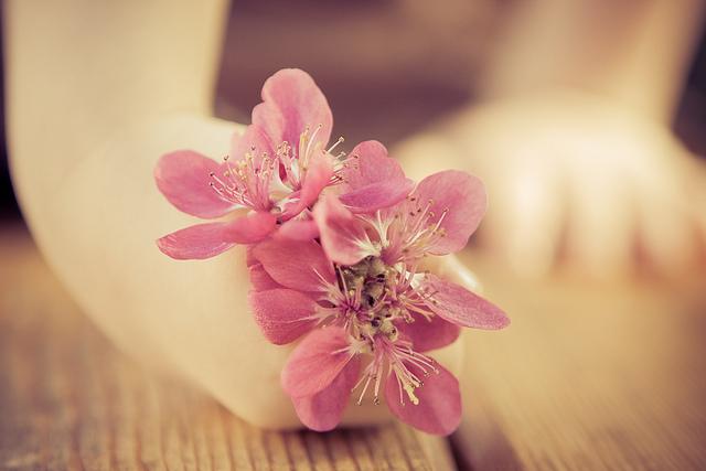 handsflower