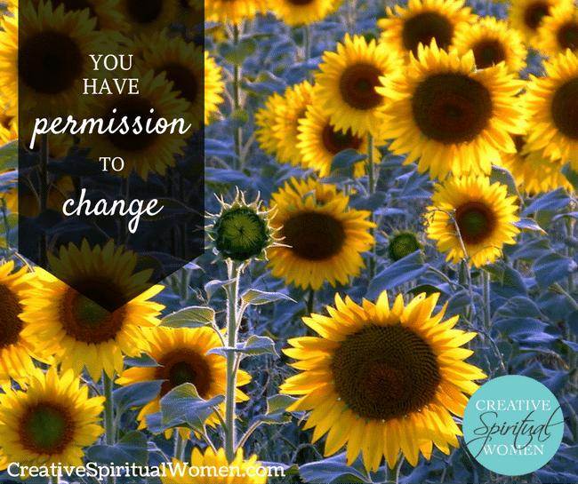 permission-change